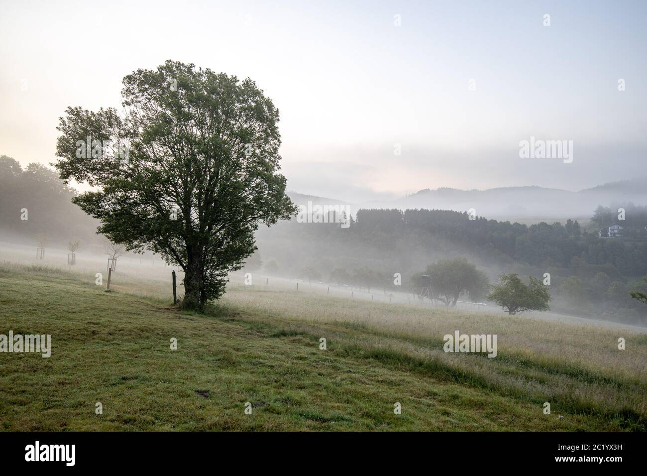 June 12th, 2020, Schwithten (Hessen): Fog lies in the early morning over the fields and the countryside near Dorfweil. | usage worldwide Stock Photo