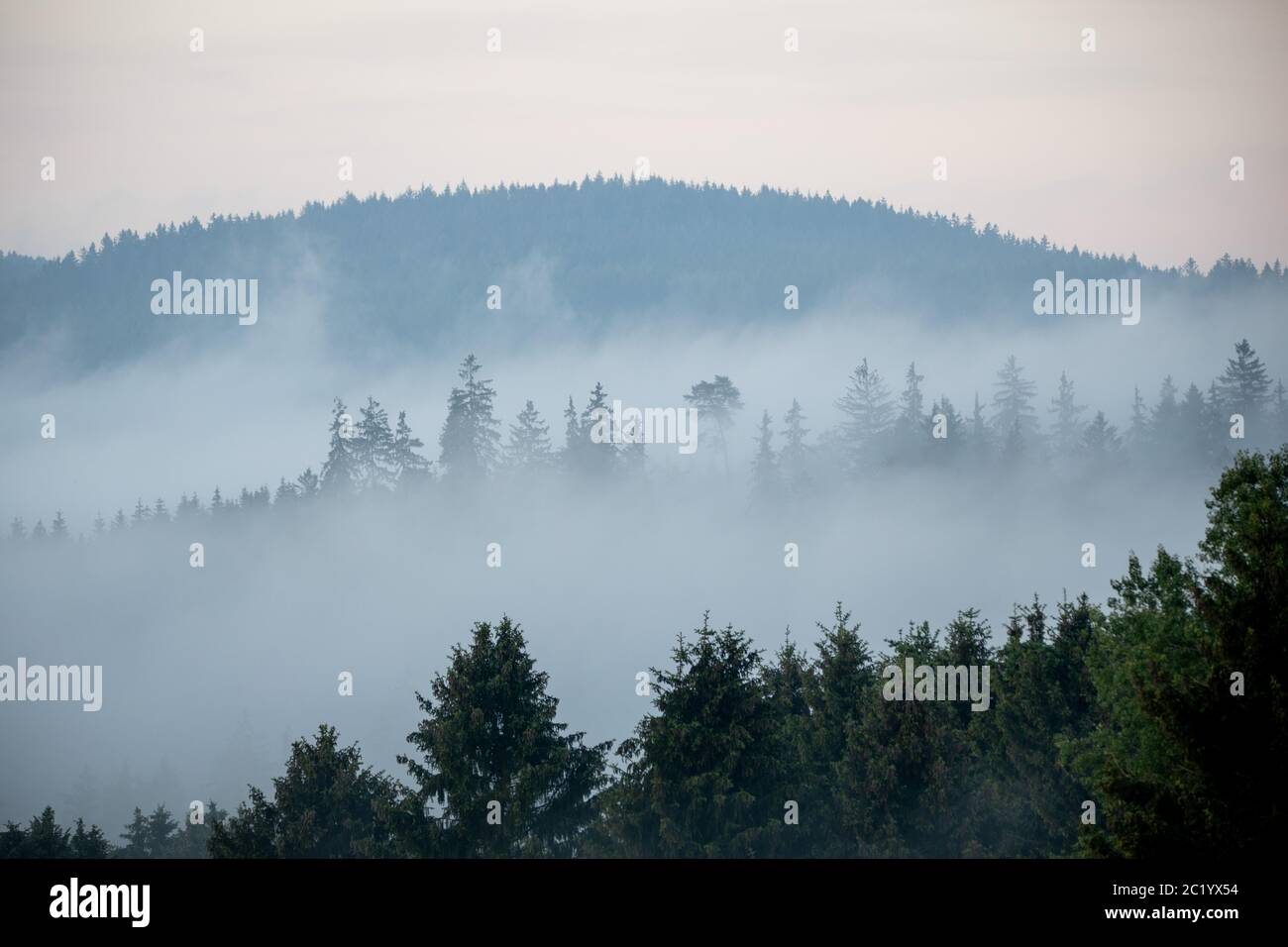 June 12th, 2020, Schwithten (Hessen): Fog lies in the early morning over the fields and the forest at Schwithten Seelenberg. | usage worldwide Stock Photo