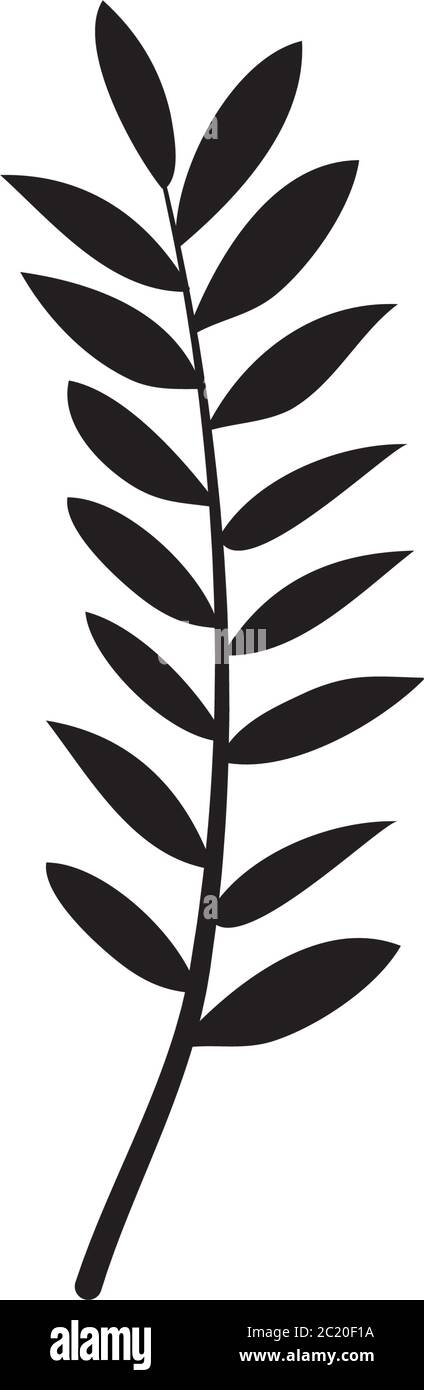 Ash Tropical Leaf Icon Over White Background Silhouette Style Vector Illustration Stock Vector Image Art Alamy Tropical plants leaves watercolor sketch icons vector. https www alamy com ash tropical leaf icon over white background silhouette style vector illustration image362658838 html