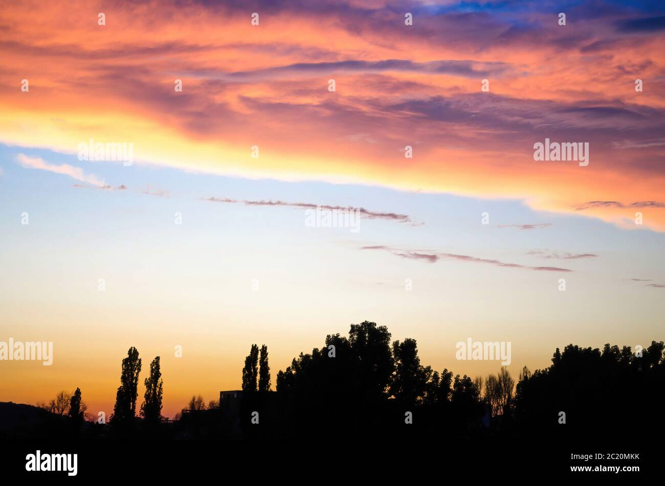Bright pink clouds floating on sunset sky over silhouettes of trees in evening in countryside Stock Photo