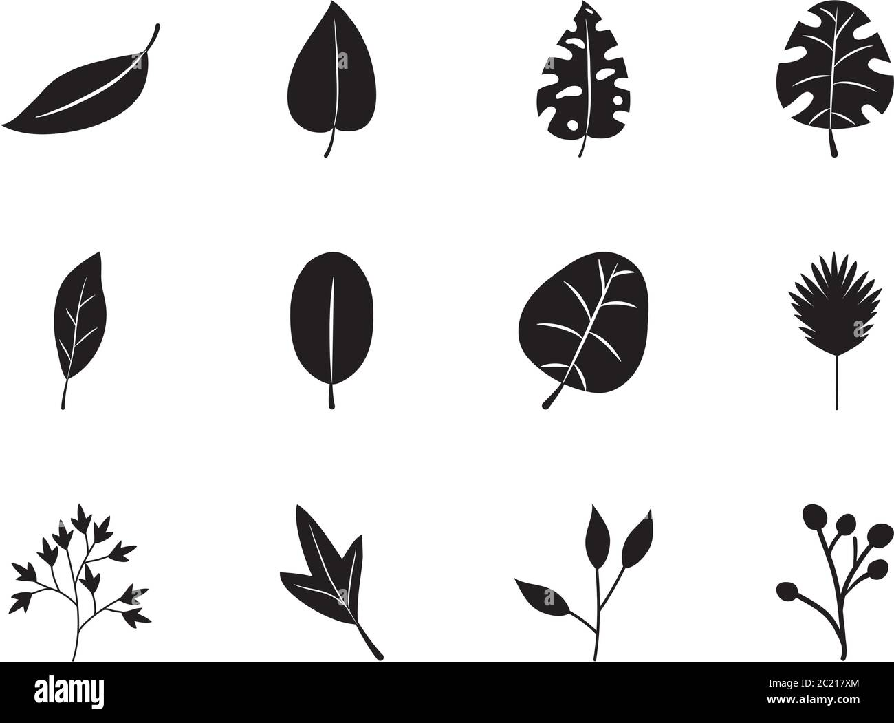 Palm Leaves And Tropical Leaves Icon Set Over White Background Silhouette Style Vector Illustration Stock Vector Image Art Alamy Flower icon of garden and tropical flowering plant vector. alamy