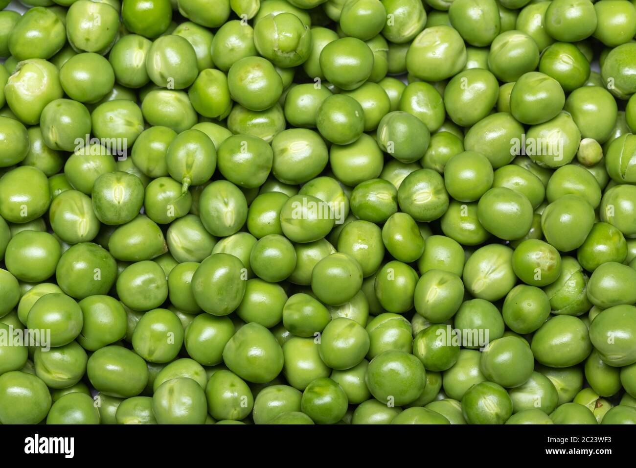 Green pea background. Pisum sativum Stock Photo