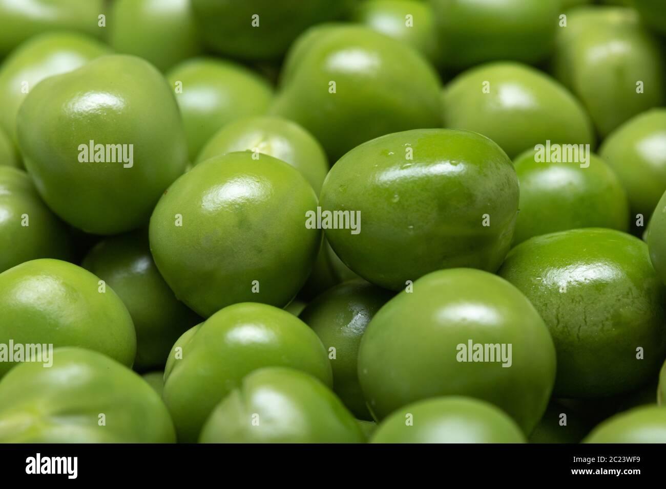 Macro of Green pea background. Pisum sativum Stock Photo