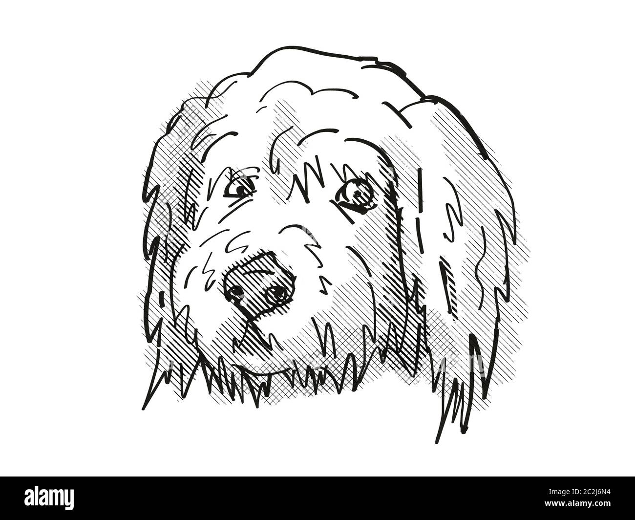 Line Drawing Puppy High Resolution Stock Photography And Images Alamy