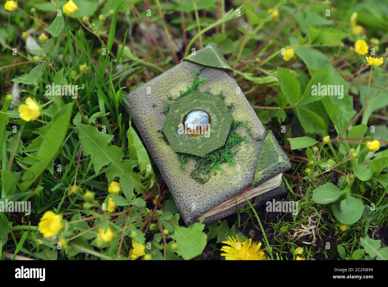 Evil Book Cover High Resolution Stock Photography And Images Alamy