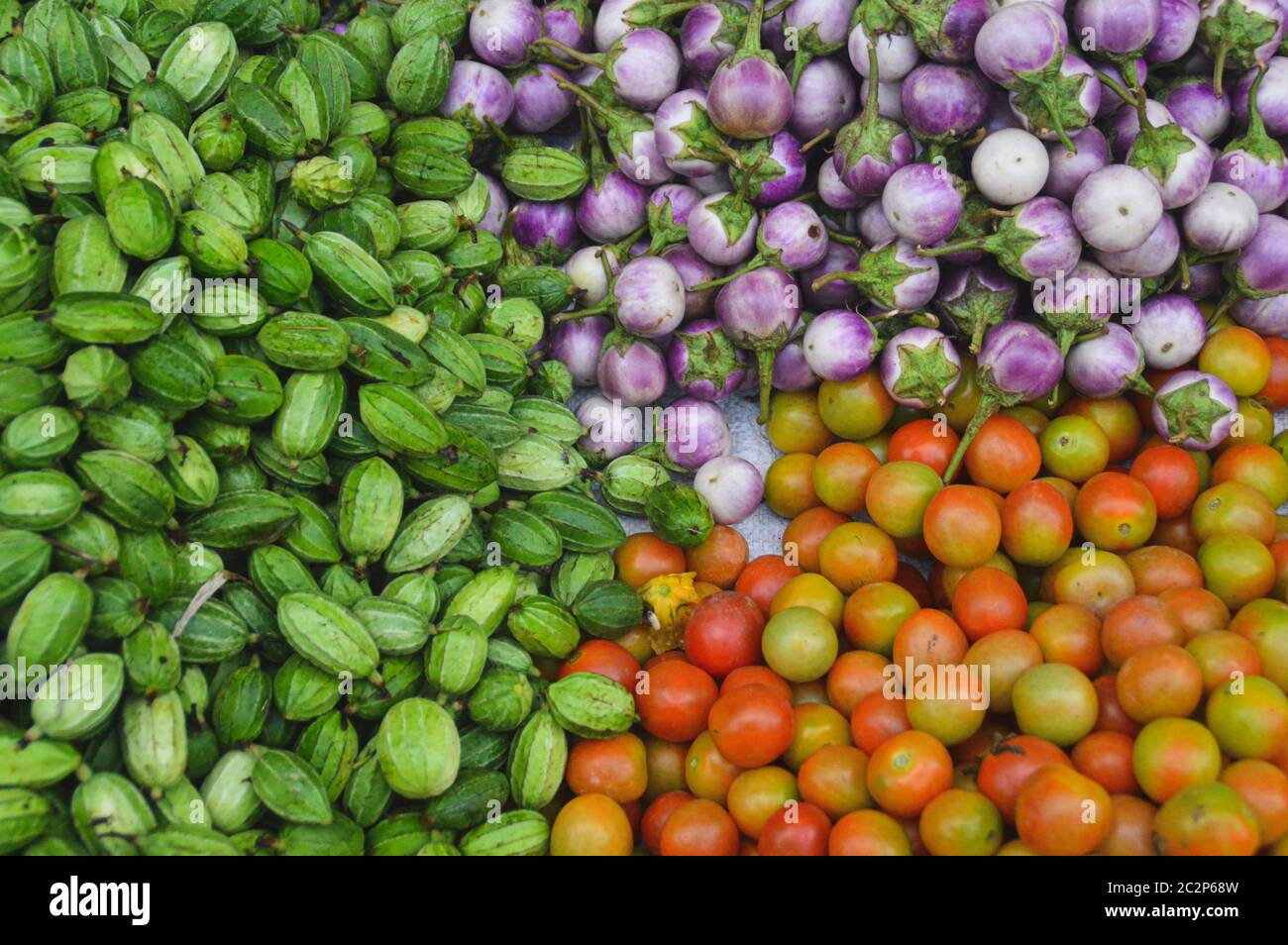 Fresh harvest of organically grown cucumbers, kermit eggplants and tomatoes Stock Photo