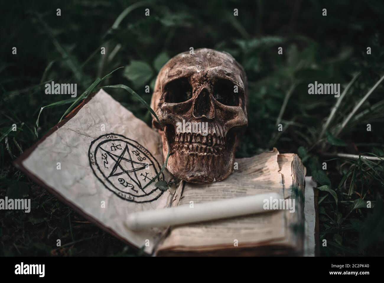 Opened black magic book with occult symbols and human skull on the grass in forest. Exorcism and supernatural rituals Stock Photo