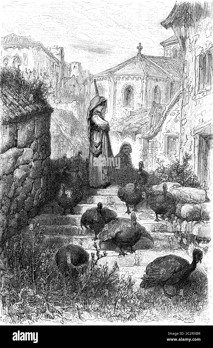 Pave a (airs turkeys), Salamanca campaign, vintage engraved illustration. Le Tour du Monde, Travel Journal, (1872). Stock Photo