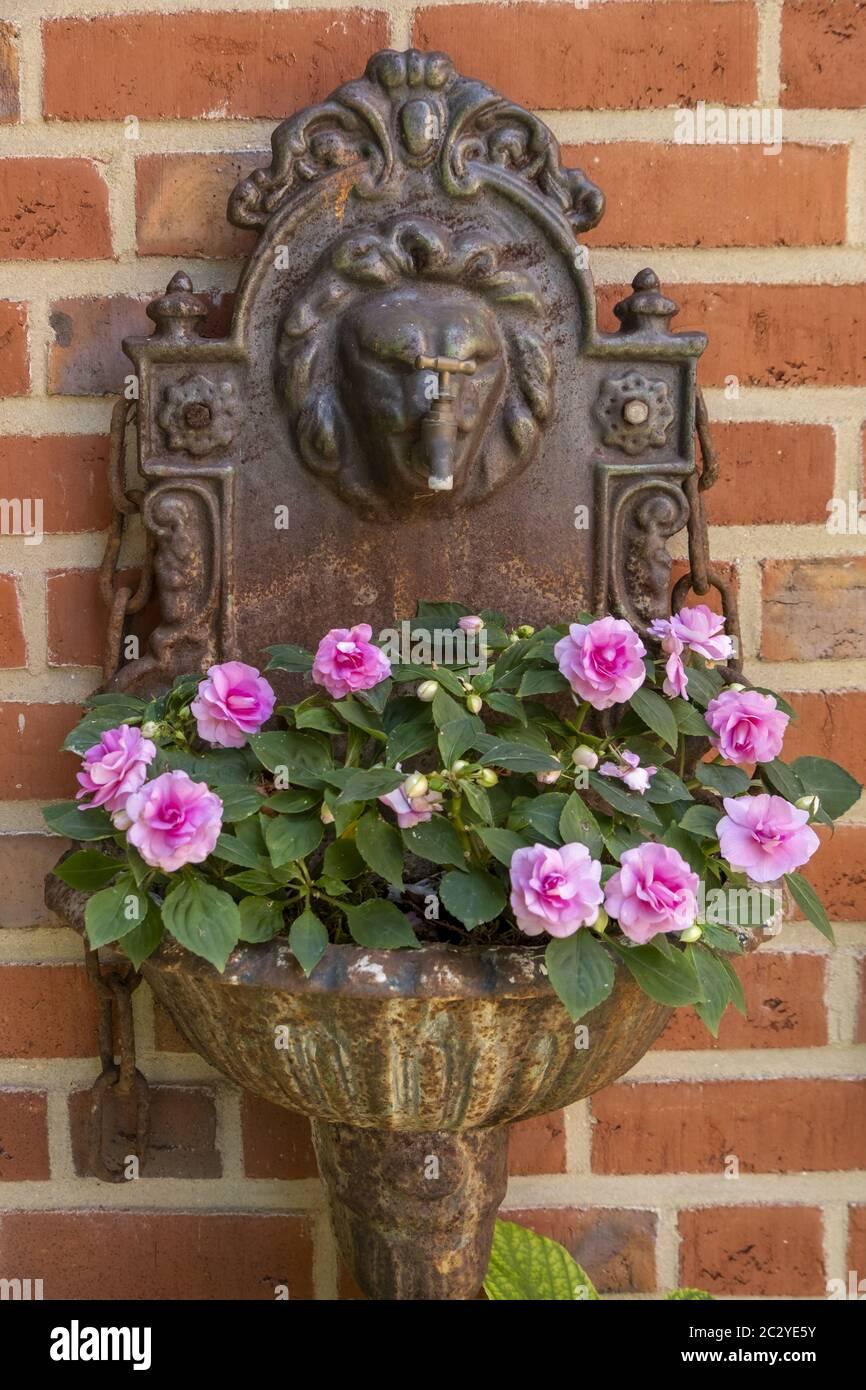 GardenDecoration Stock Photo
