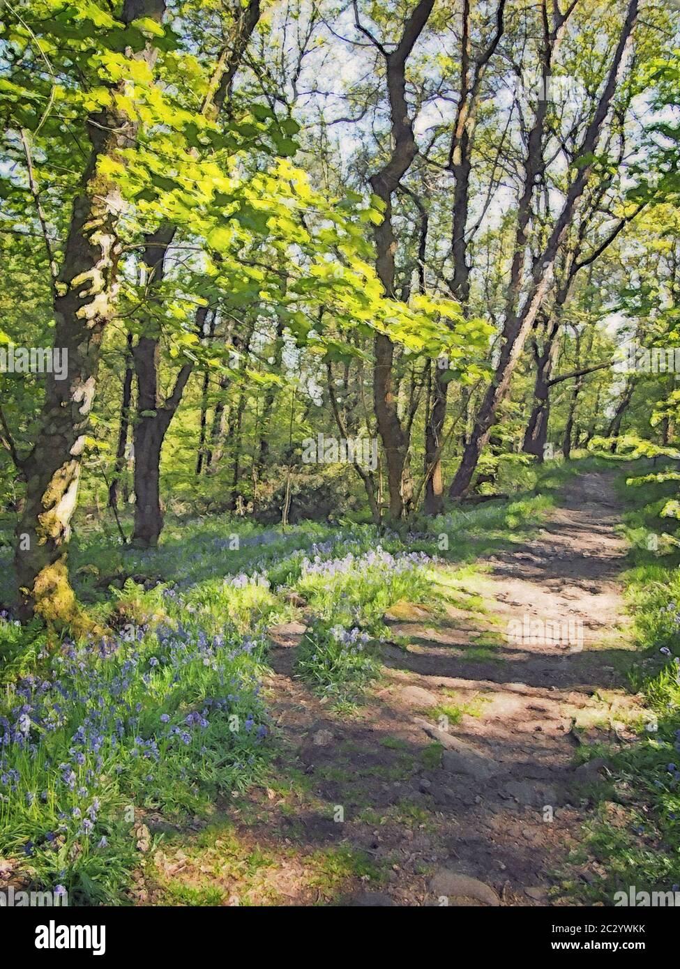 Download Forest Watercolor Landscape
