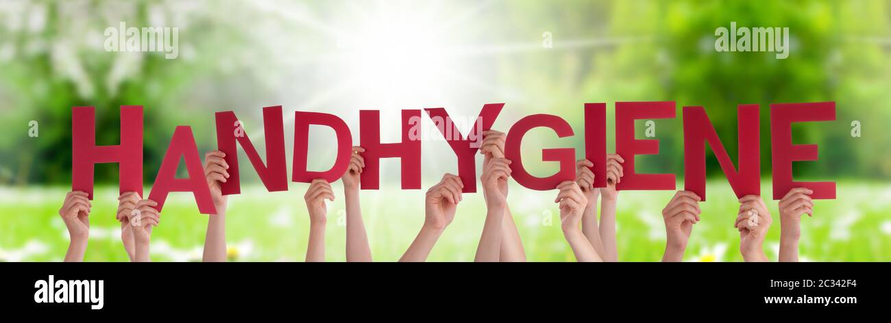 People Hands Holding Red German Word Handhygiene Means Hand Hygiene. Sunny Green Grass Meadow As Background Stock Photo