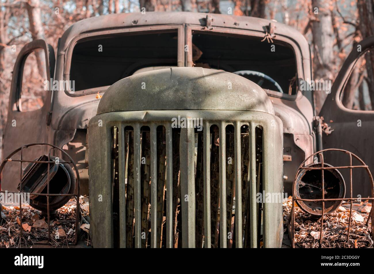 rusty military truck cab in the Chernobyl forest close up Stock Photo