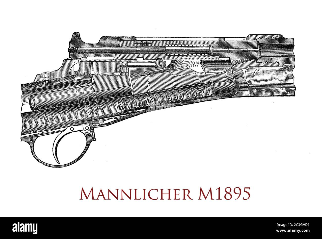 Mannlicher M1895 Infantry Repeating-Rifle straight pull bolt-action rifle designed by Ferdinand Ritter von Mannlicher and used by Austro-Hungarian Army in World War I Stock Photo