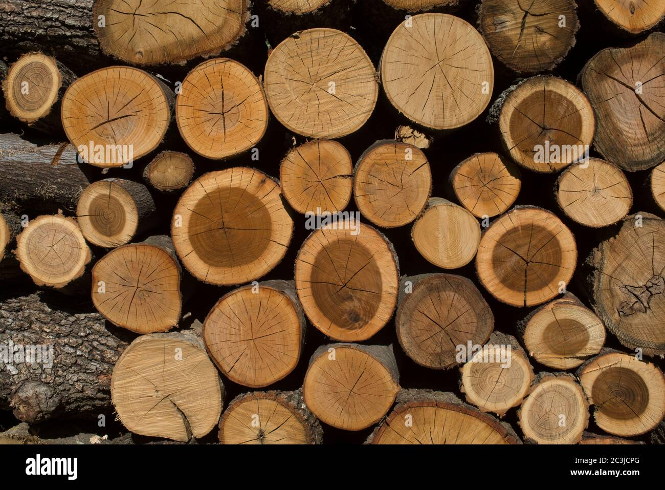 Pile of Wood, Wood Stack,Italy Stock Photo