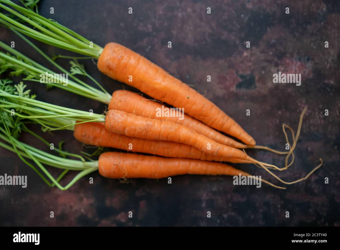 A bunch of carrots Stock Photo