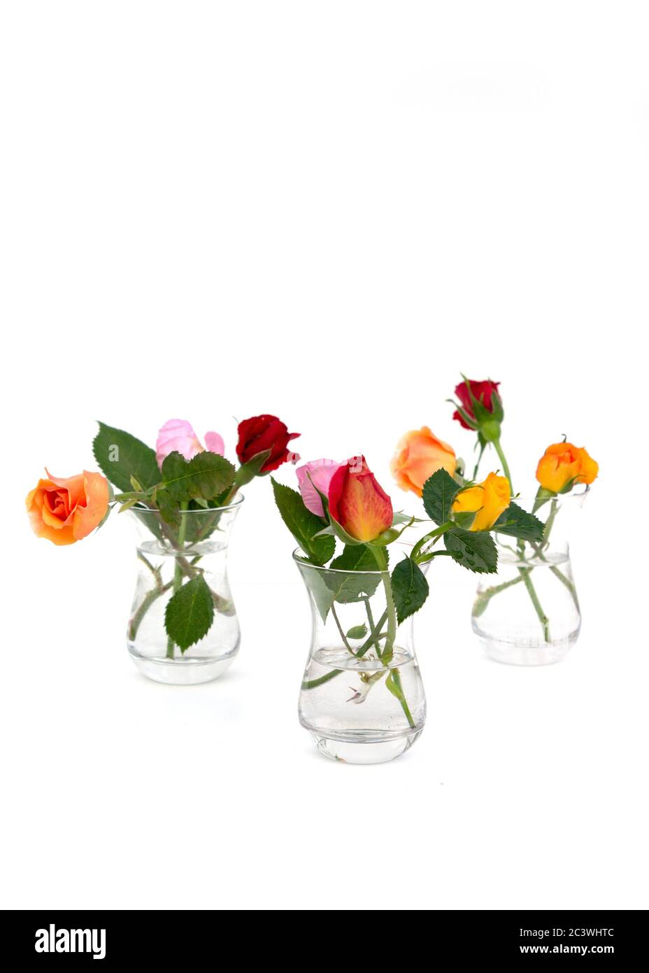 Minimalist Composition Of Multicolored Roses In Glass Vases On White Background Holiday Greeting Card Copy Space Stock Photo Alamy