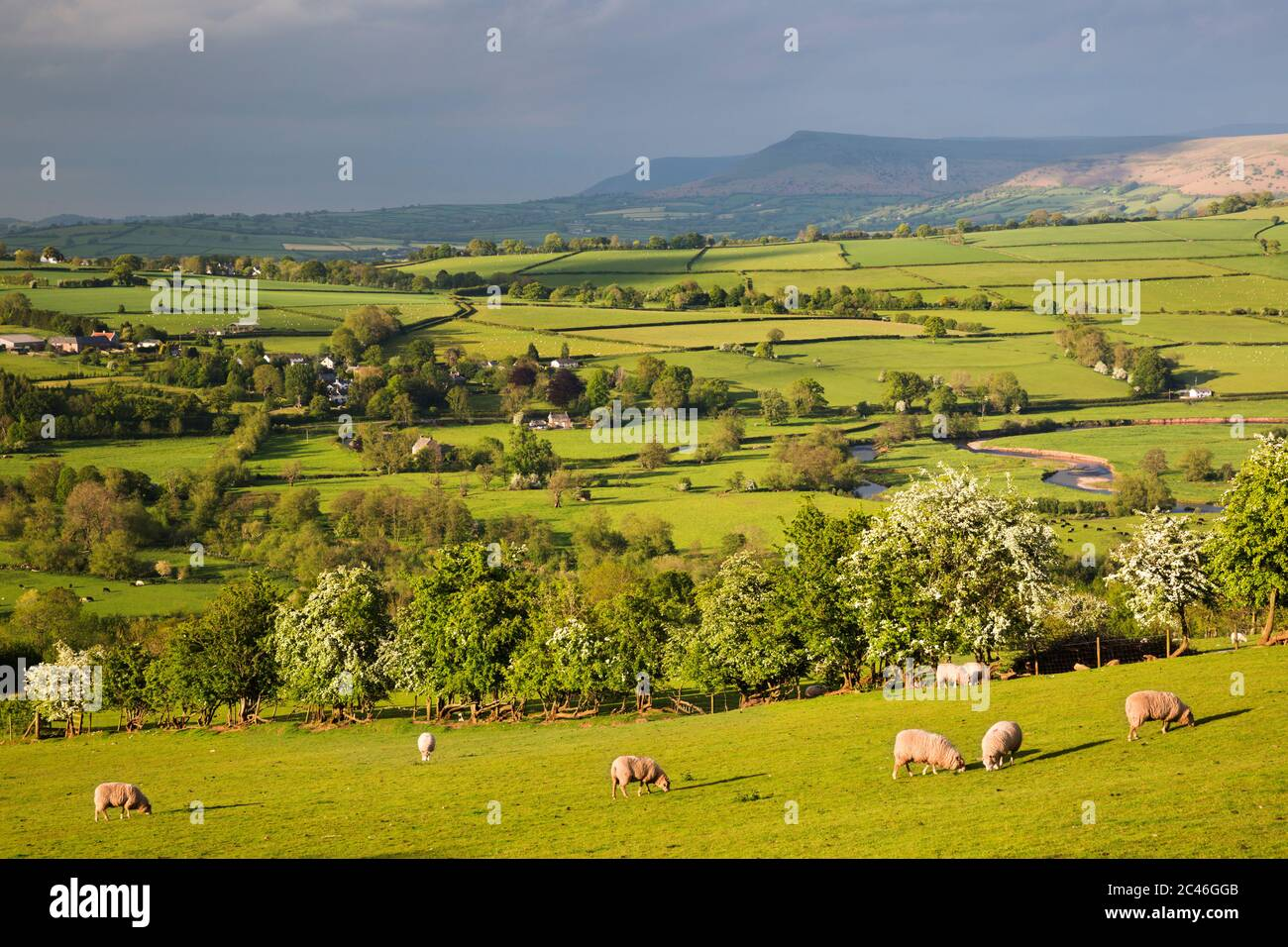 View over Usk Valley to Mynydd Llangorse, Talybont-on-Usk, Brecon Beacons National Park, Powys, Wales, United Kingdom, Europe Stock Photo