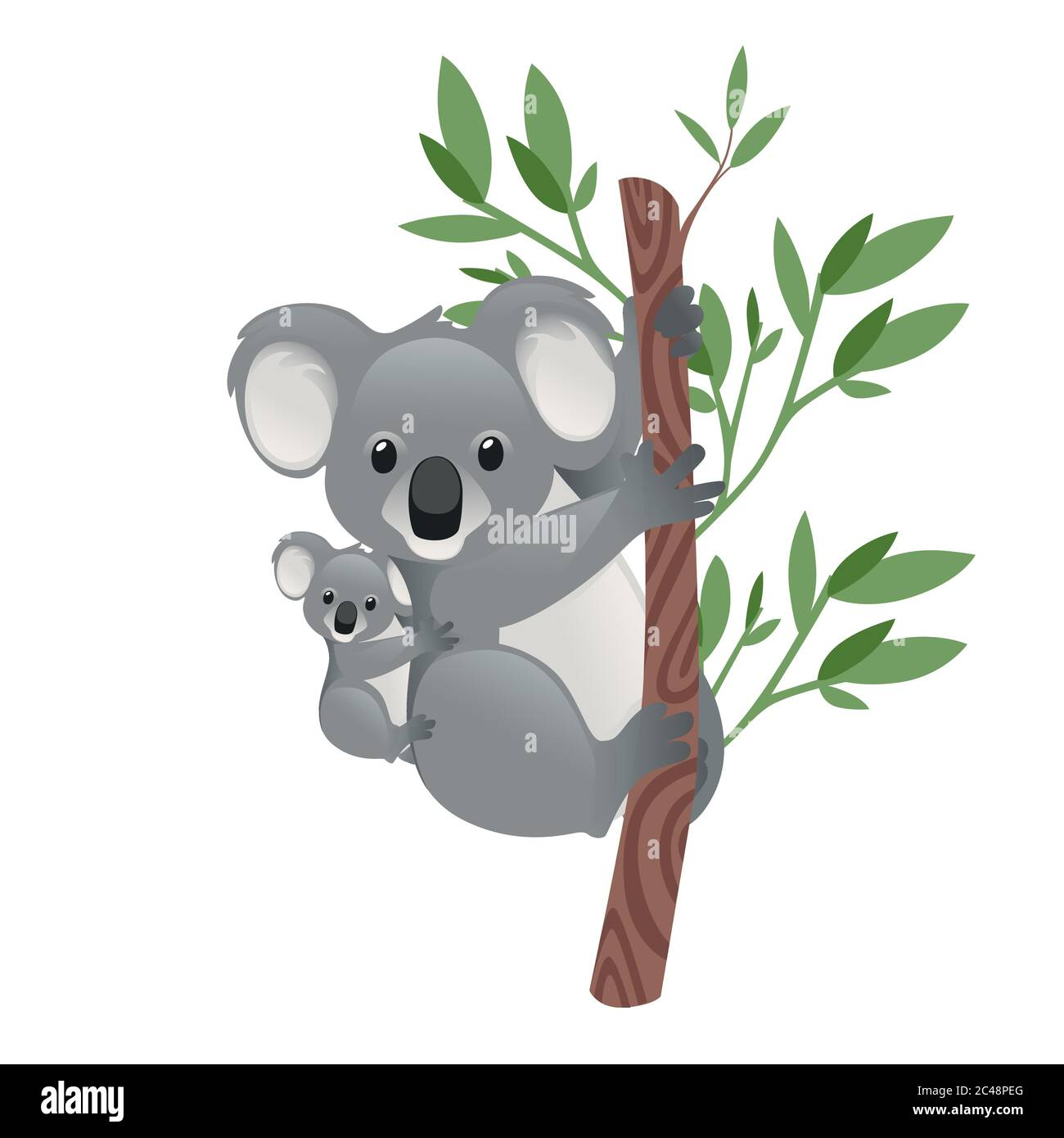 Cute Koala Family Mother With Children Sit On The Tree Cartoon Animal Design Flat Vector Illustration Isolated On White Background Stock Vector Image Art Alamy When researchers took infrared pictures of the koalas hugging trees , they realized that. https www alamy com cute koala family mother with children sit on the tree cartoon animal design flat vector illustration isolated on white background image364069624 html