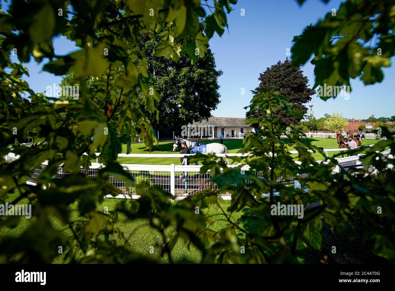 A general view as a horse is lead around the parade ring at Leicester Racecourse. Stock Photo