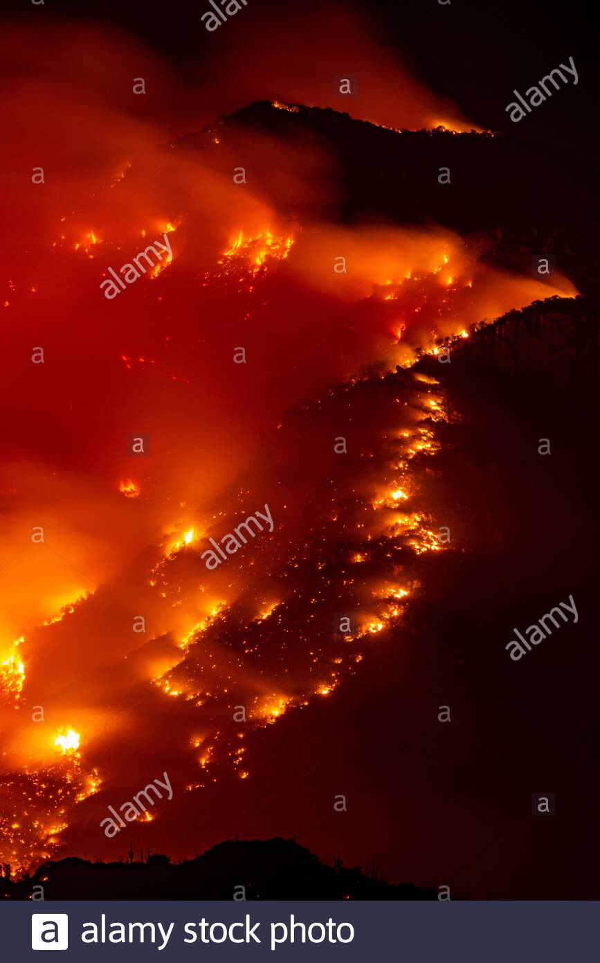 June 24th 2020 near Oracle, Arizona, the Bighorn Fire races up the ridge just above Biosphere 2 in Canada Del Oro Canyon.  As of tonight the fire in the Santa Catalina Mountains is 74,547 acres and 33 percent contained. On June 5, 2020 at 10:22PM a lightning strike started the Bighorn Fire in the Catalina Mountains northwest of Tucson, Arizona on the Coronado National Forest. Dry, windy conditions have pushed the fire closer to communities and is now forcing evacuations. Search Keywords Willett and Fire to see my other photos of the Bighorn Fire. Stock Photo
