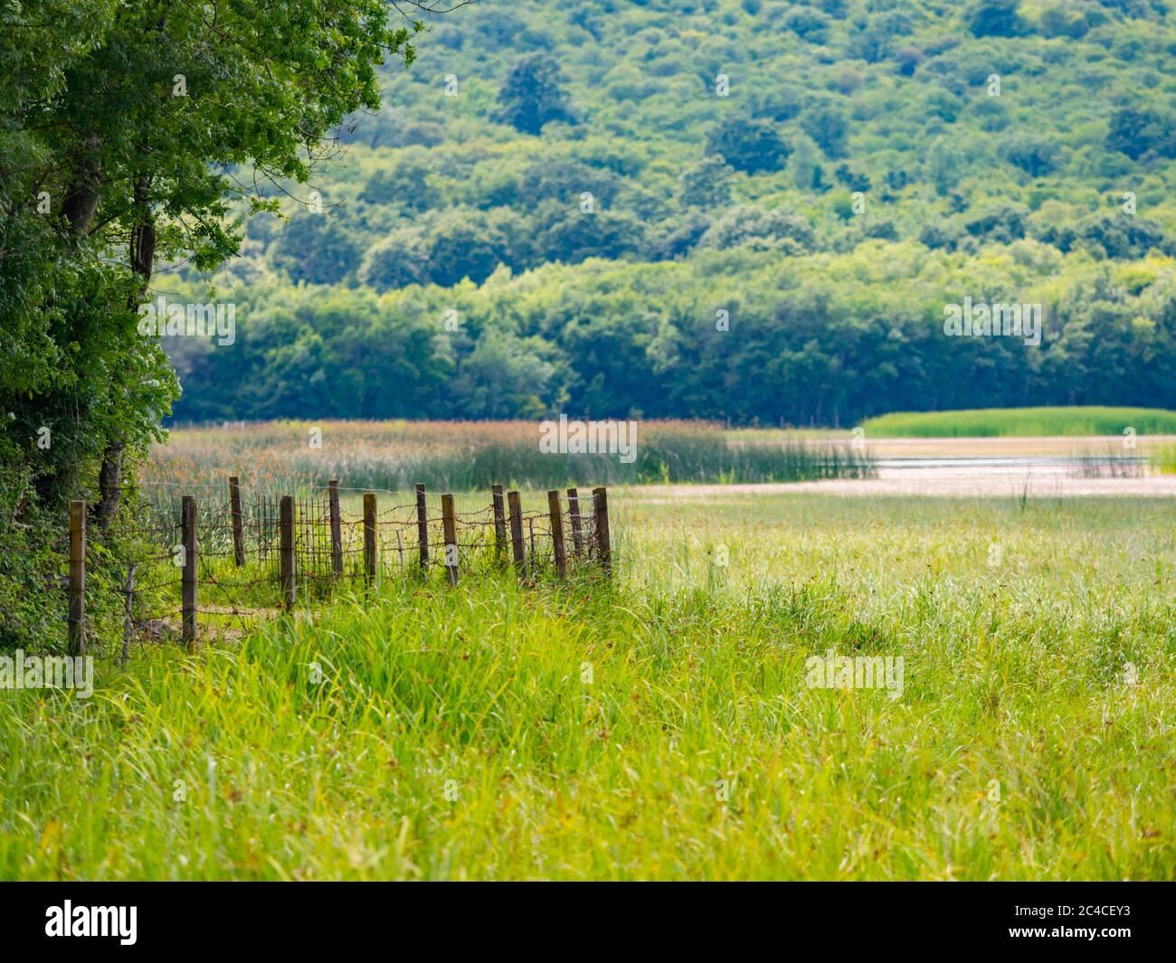 Swampy lake near fence Ponikve island Krk Croatia Europe Stock Photo