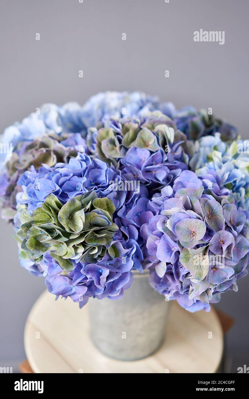 Beautiful Blue Hydrangea Flowers In A Vase On A Table Bouquet Of Light Pink Flower Decoration Of Home Wallpaper And Background Stock Photo Alamy