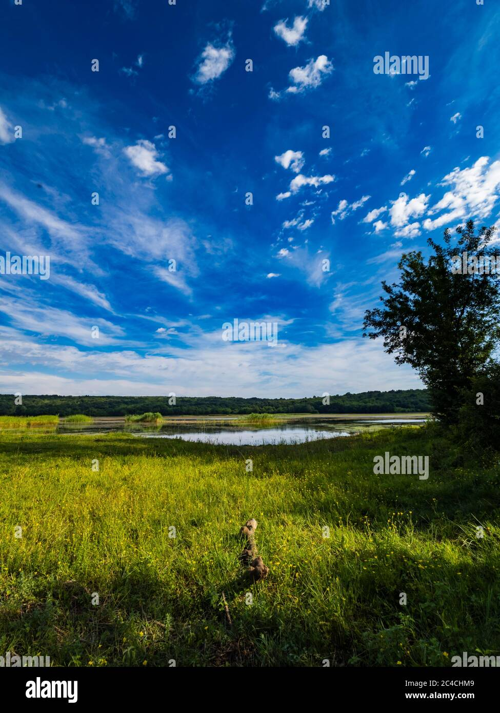 Swampy lake Ponikve island Krk Croatia Europe Stock Photo