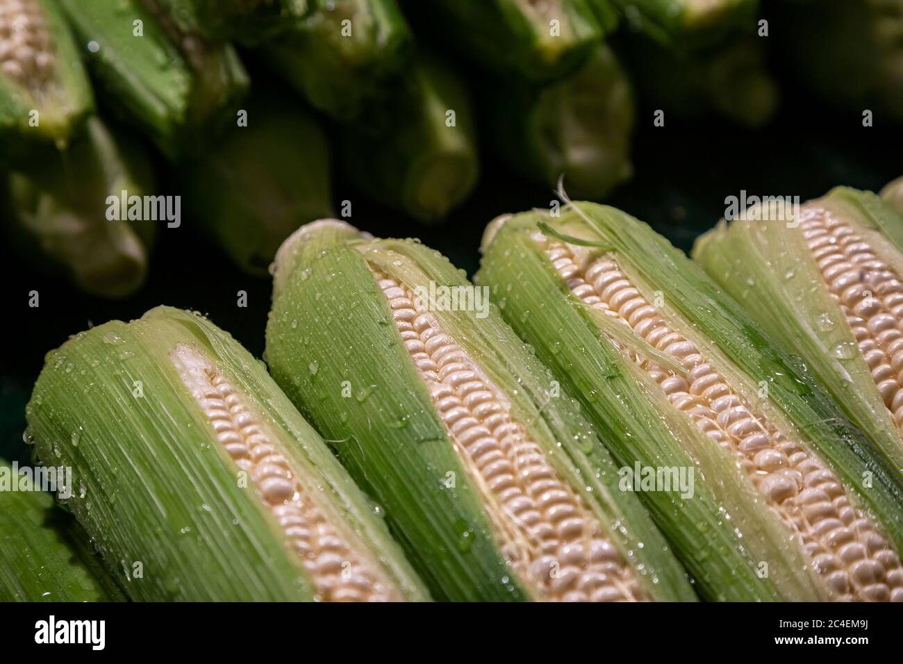 Cobs of freshly washed sweetcorn for sale on a market stall Stock Photo