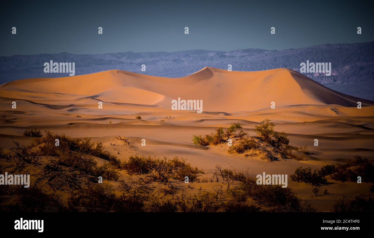 Beautiful Mesquite Sand Dunes at Death Valley California Stock Photo