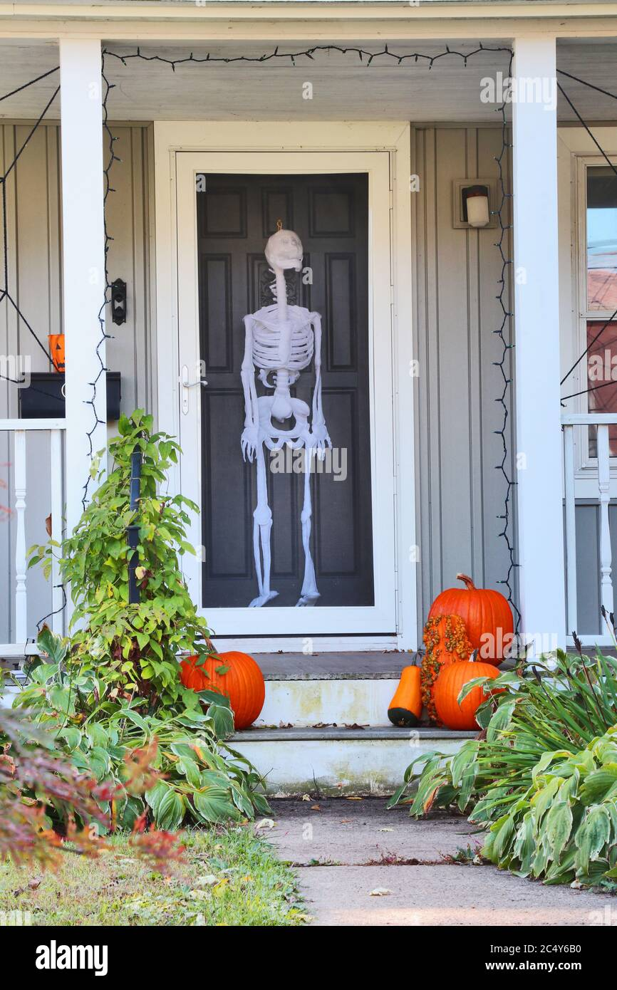 Private house front door with fake skeleton and stair with bright pumpkins decorated for an old american trick-or-treat Halloween tradition. Vertical Stock Photo