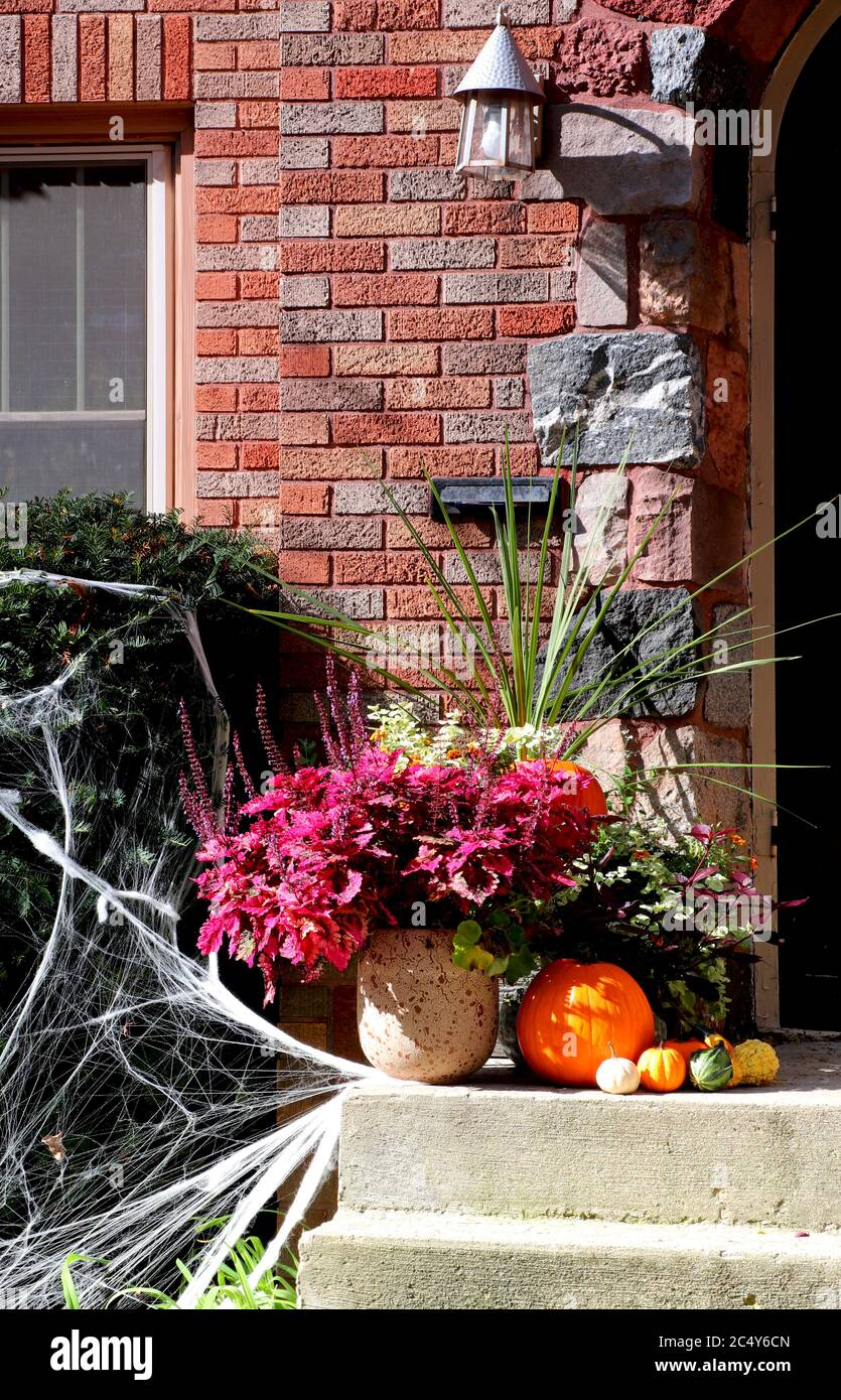 Main entrance stair of the old style brick house decorated for autumn holidays season. Stock Photo