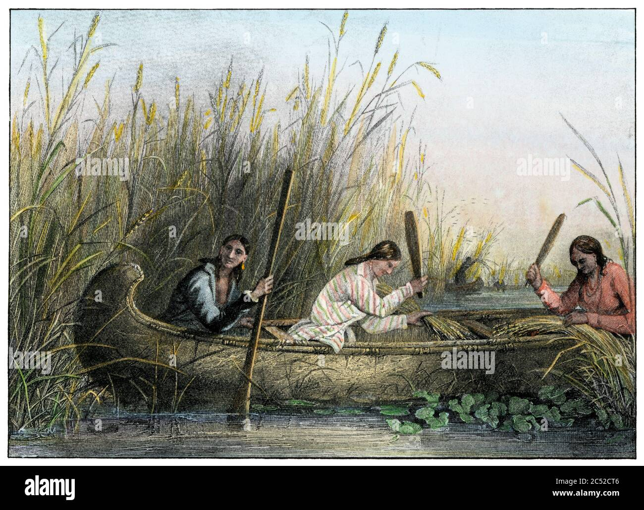 Ojibwa women gathering wild rice. Hand-colored halftone of a Seth Eastman illustration Stock Photo