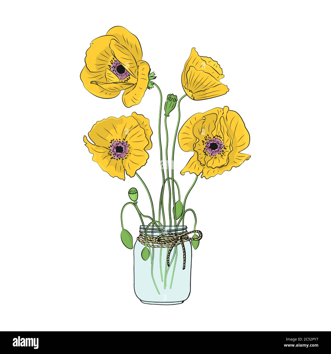 Hand drawn poppy flowers in mason jar clipart. Floral design element. Isolated on white background. Vector Stock Vector