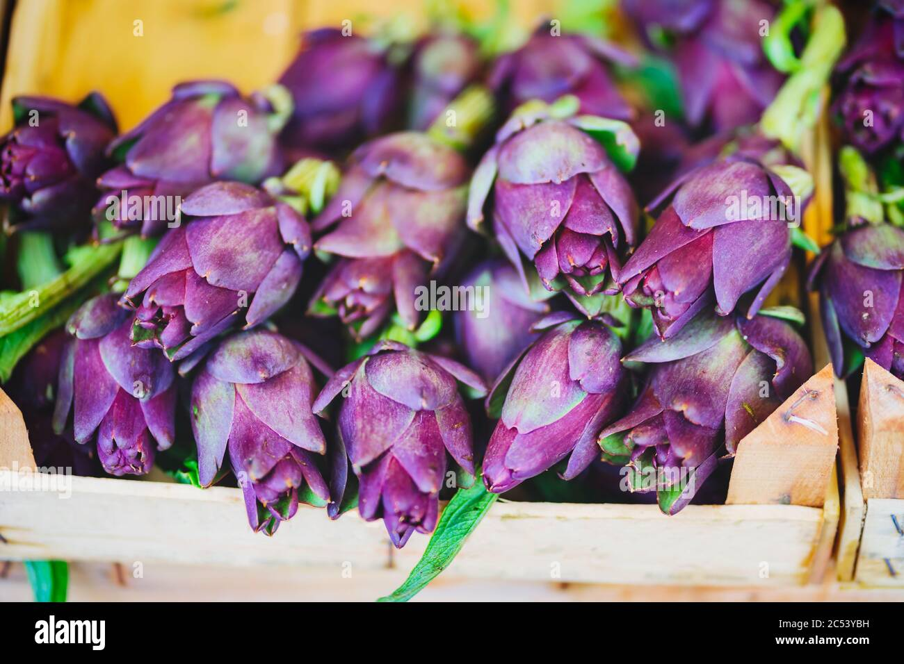 Fresh artichokes of venezia market also called Carciofi in italian language. Italy. Stock Photo