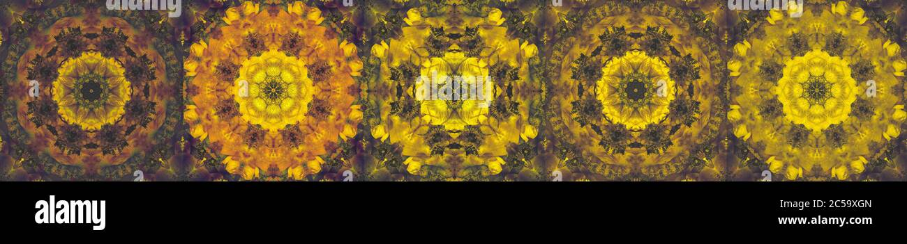 set of pastel ornamental flora mandalas made of macros of yellow orange green anemone blossoms with detailed texture in vintage painting style Stock Photo