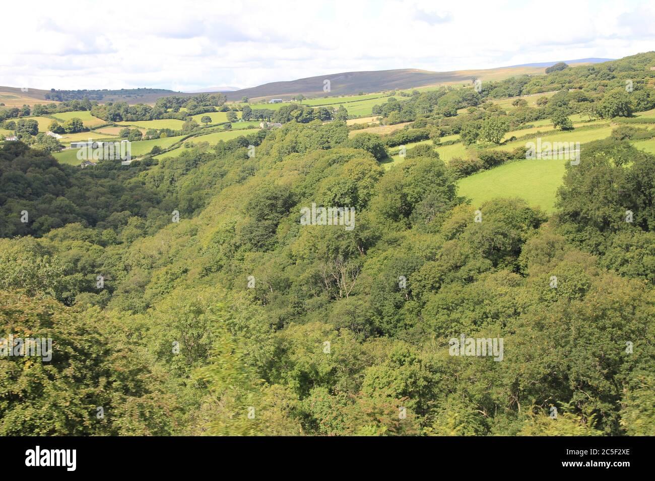 Brecon Mountain Railway in Glamorgan. Wales Stock Photo