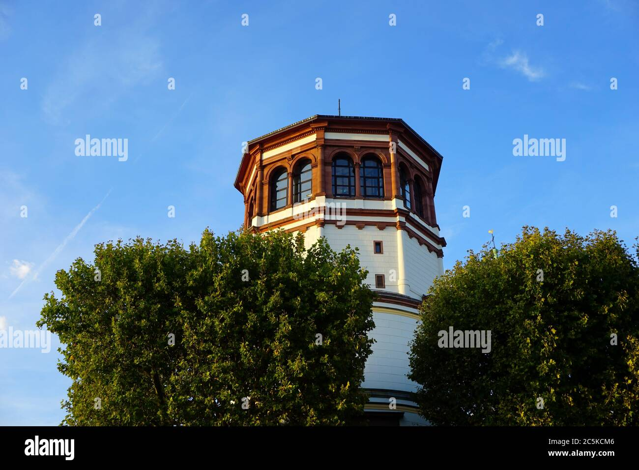 """The ancient """"Schlossturm"""" at Burgplatz in Old Town, framed by old trees. It once belonged to a castle that was destroyed in 1872. Stock Photo"""