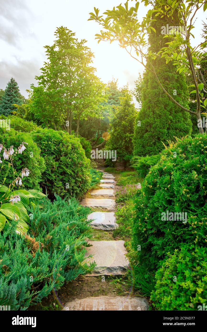Stone Footpath In A Garden With Green Plants Landscaping With Bushes And Trees With Sun Flare Stock Photo Alamy