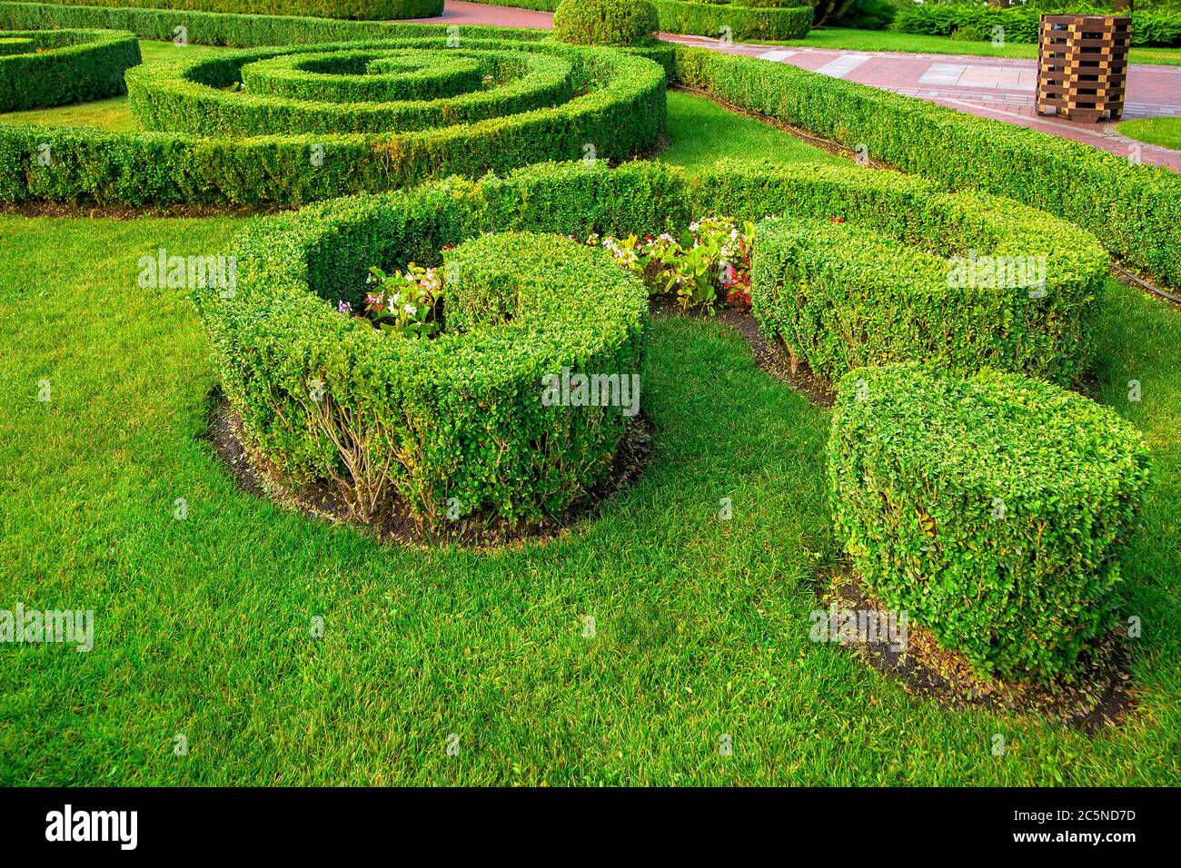 A Garden Landscape Design Of A Hedge Of Boxwood Bushes Growing With Patterns With Green Lawn And Flowers On A Summer Day Stock Photo Alamy