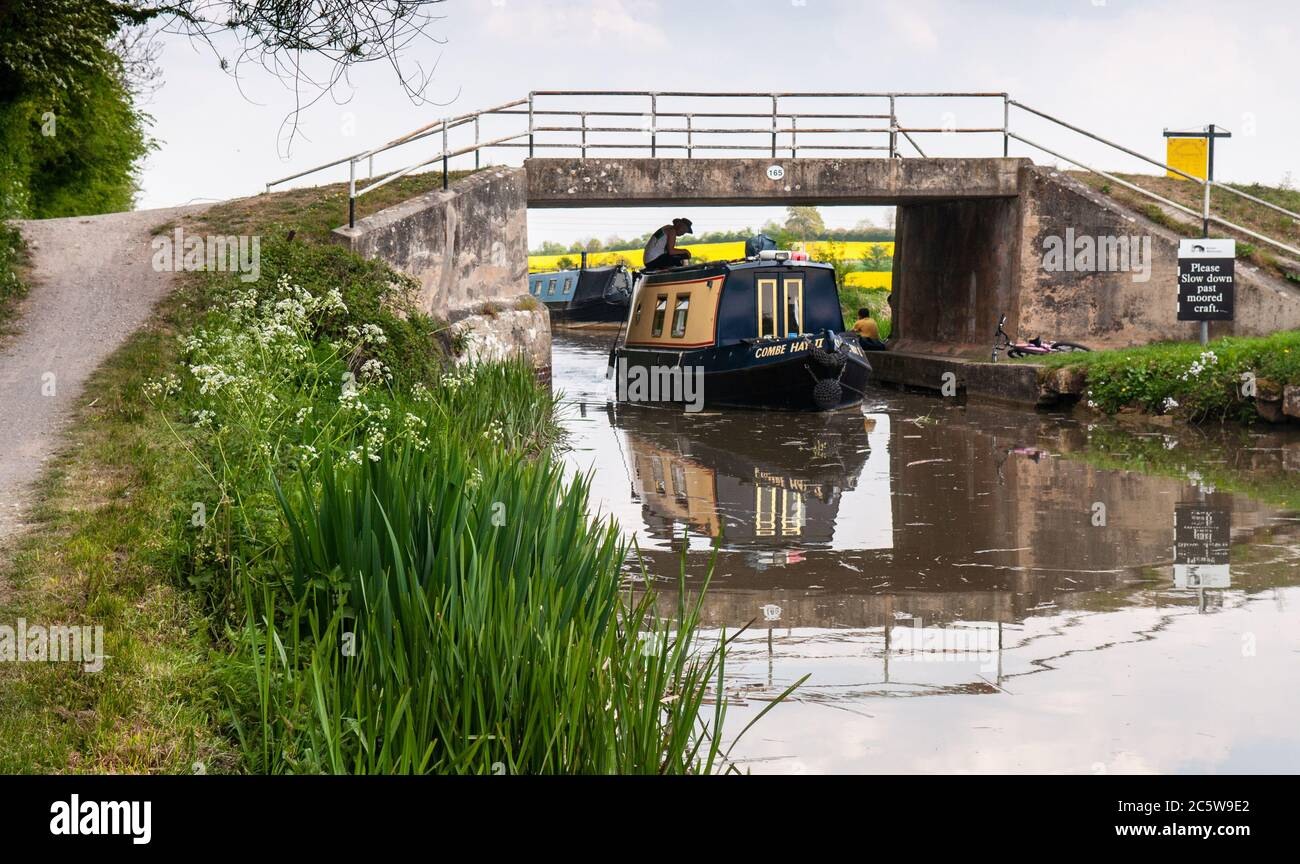 A boater navigates a traditional narrowboat under bridge 165 on the Kennet and Avon Canal at Hilperton Marsh near Trowbridge in Wiltshire. Stock Photo