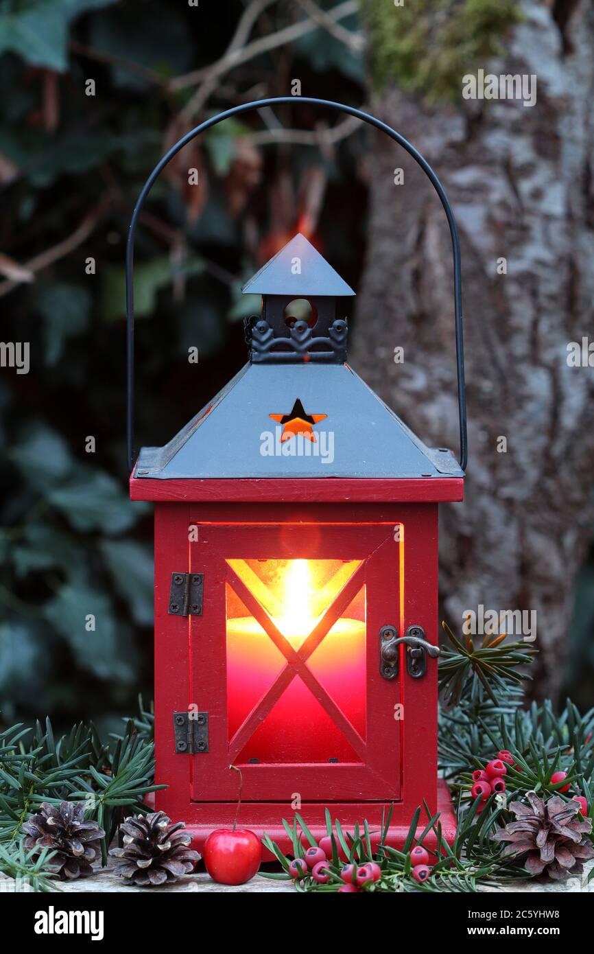 winter garden decoration with red wooden lantern Stock Photo