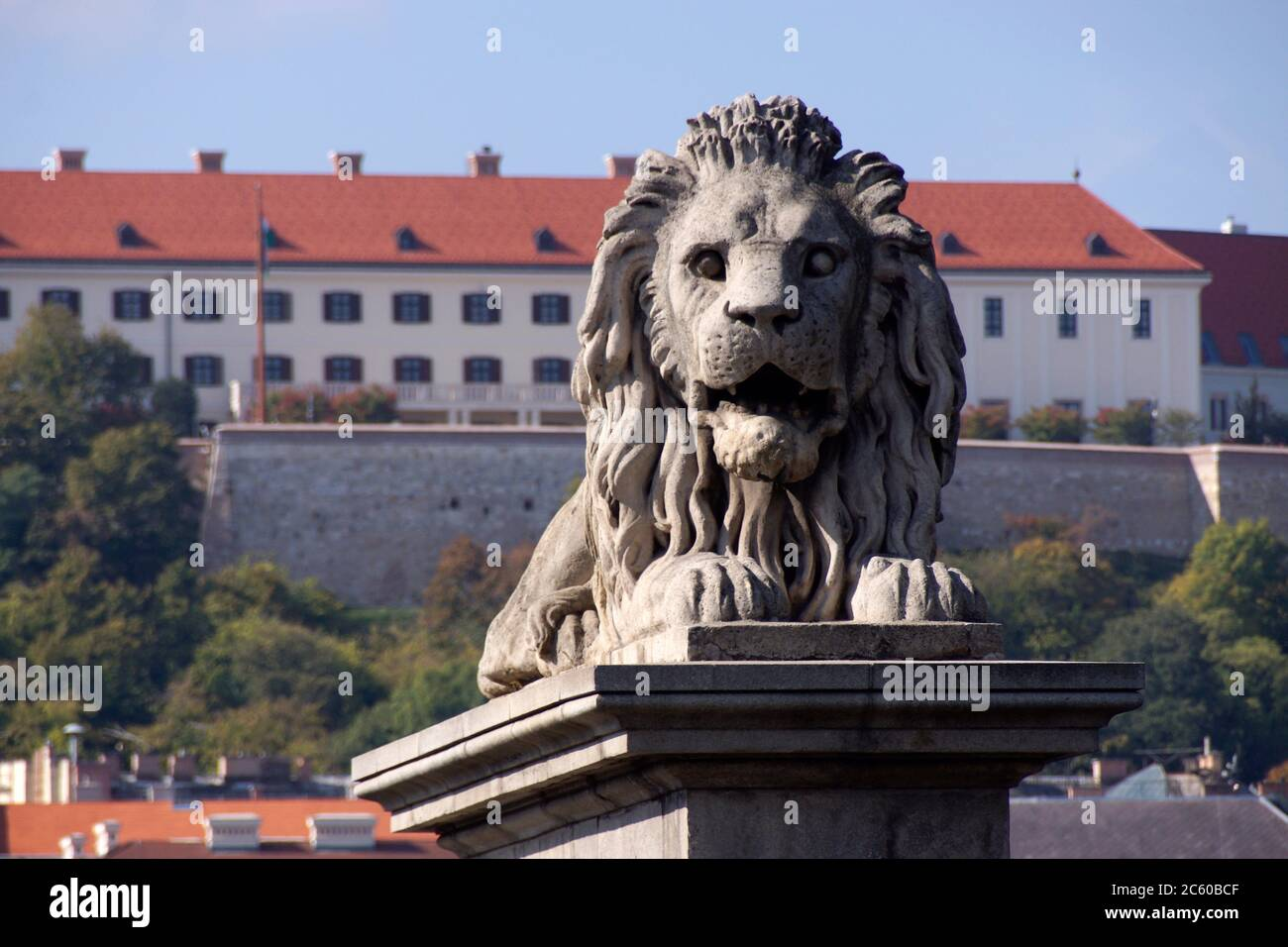 Budapest (Hungary). One of the lions from the Chain Bridge in the city of Budapest. Stock Photo