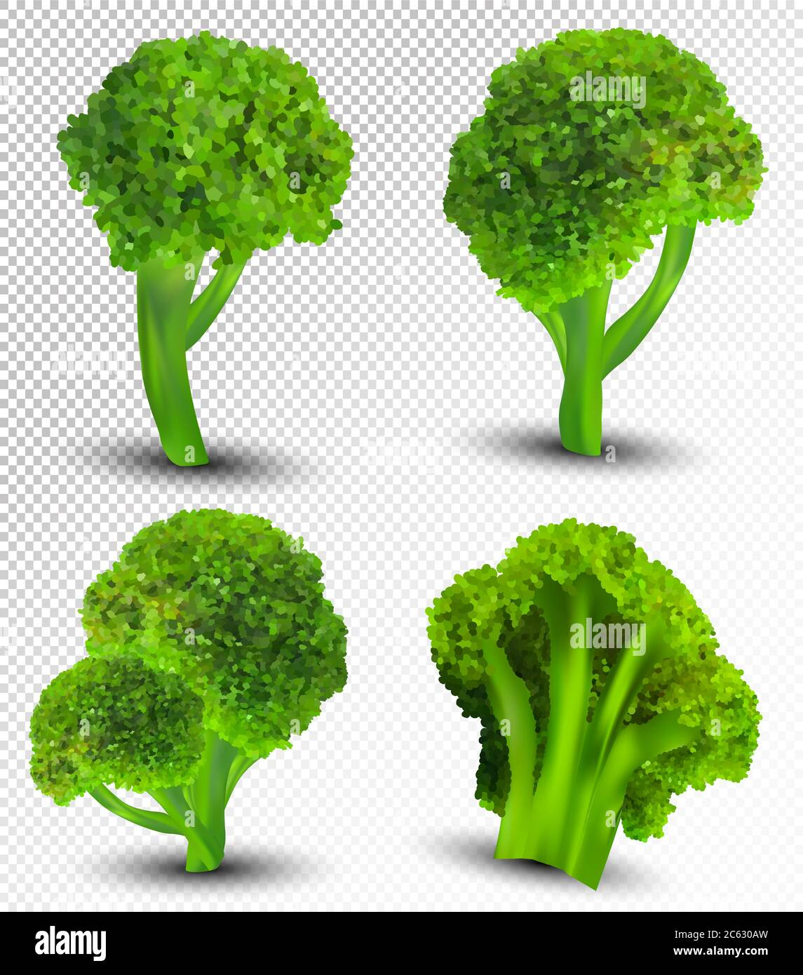 3d realistic broccoli collection fresh vegetables broccoli cabbage on transparent background nature product detailed vector illustration stock vector image art alamy https www alamy com 3d realistic broccoli collection fresh vegetables broccoli cabbage on transparent background nature product detailed vector illustration image365171825 html
