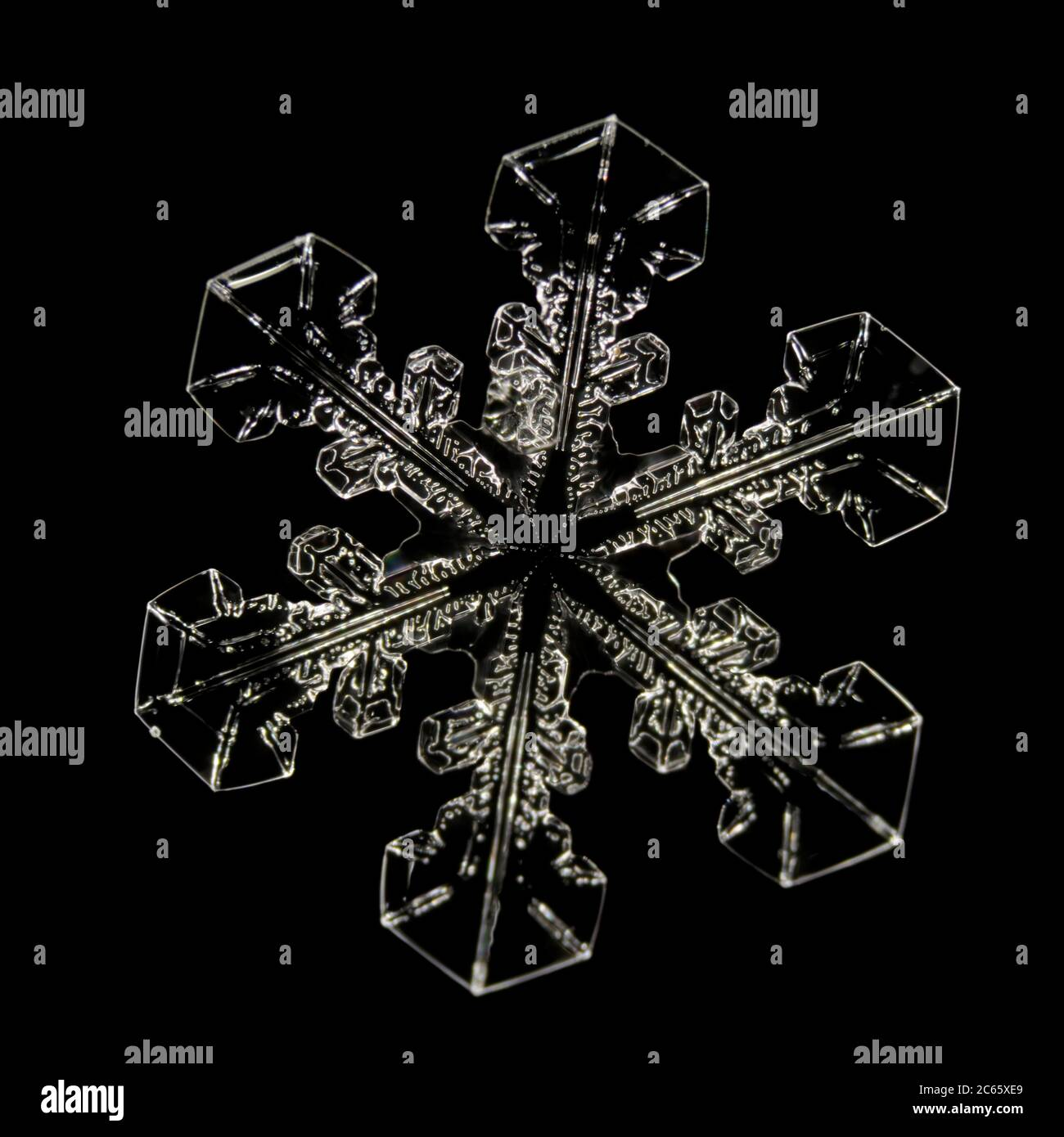 Snow Crystal, Snowflake magnified under microscope, Lillehammer, Norway Stock Photo