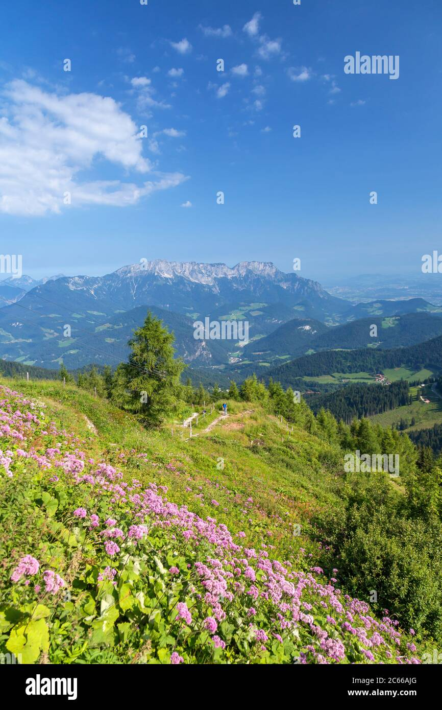 At the Purtschellerhaus on the border behind the Untersberg (1,973 m), near Berchtesgaden, Berchtesgadener Land, Upper Bavaria, Bavaria, Southern Germany, Germany, Europe Stock Photo