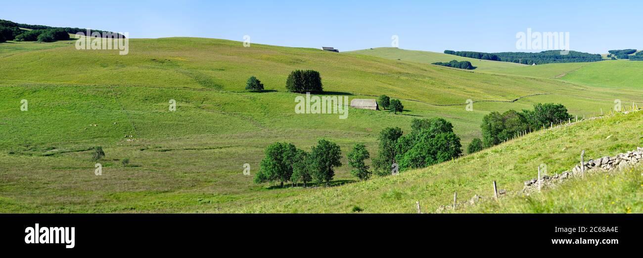 Rolling landscape of fields, Aubrac Plateau, Cantal, Auvergne Rhone Alpes region, France, Europe Stock Photo