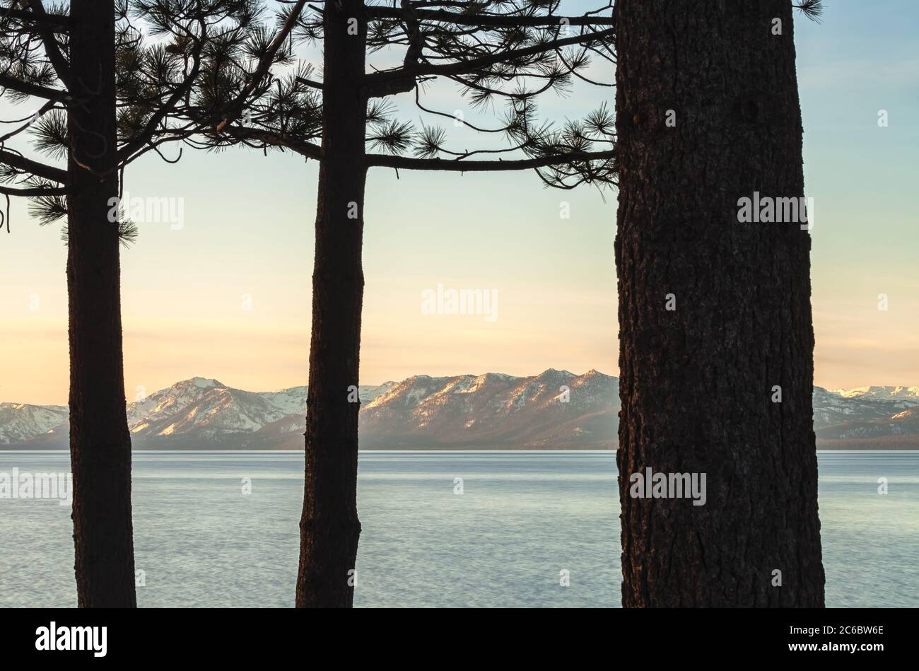 Scenic view of the Lake Tahoe at sunrise with the silhouette of pine trees in foreground, California, USA. Stock Photo