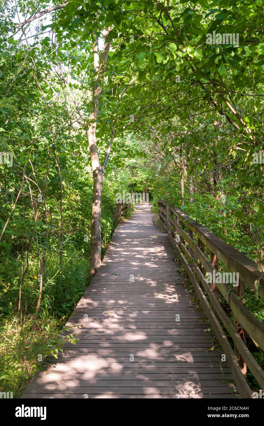 A wooden walking bridge in Frick Park on a sunny summer day, Pittsburgh, Pennsylvania, USA Stock Photo
