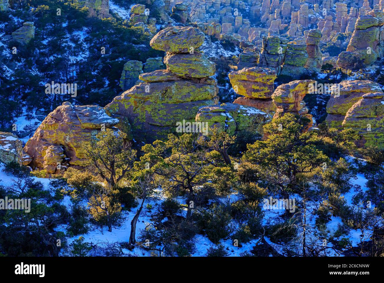 Chiricahua National Monument formations are spotlighted by the late Winter sun. Southeast Arizona. Stock Photo