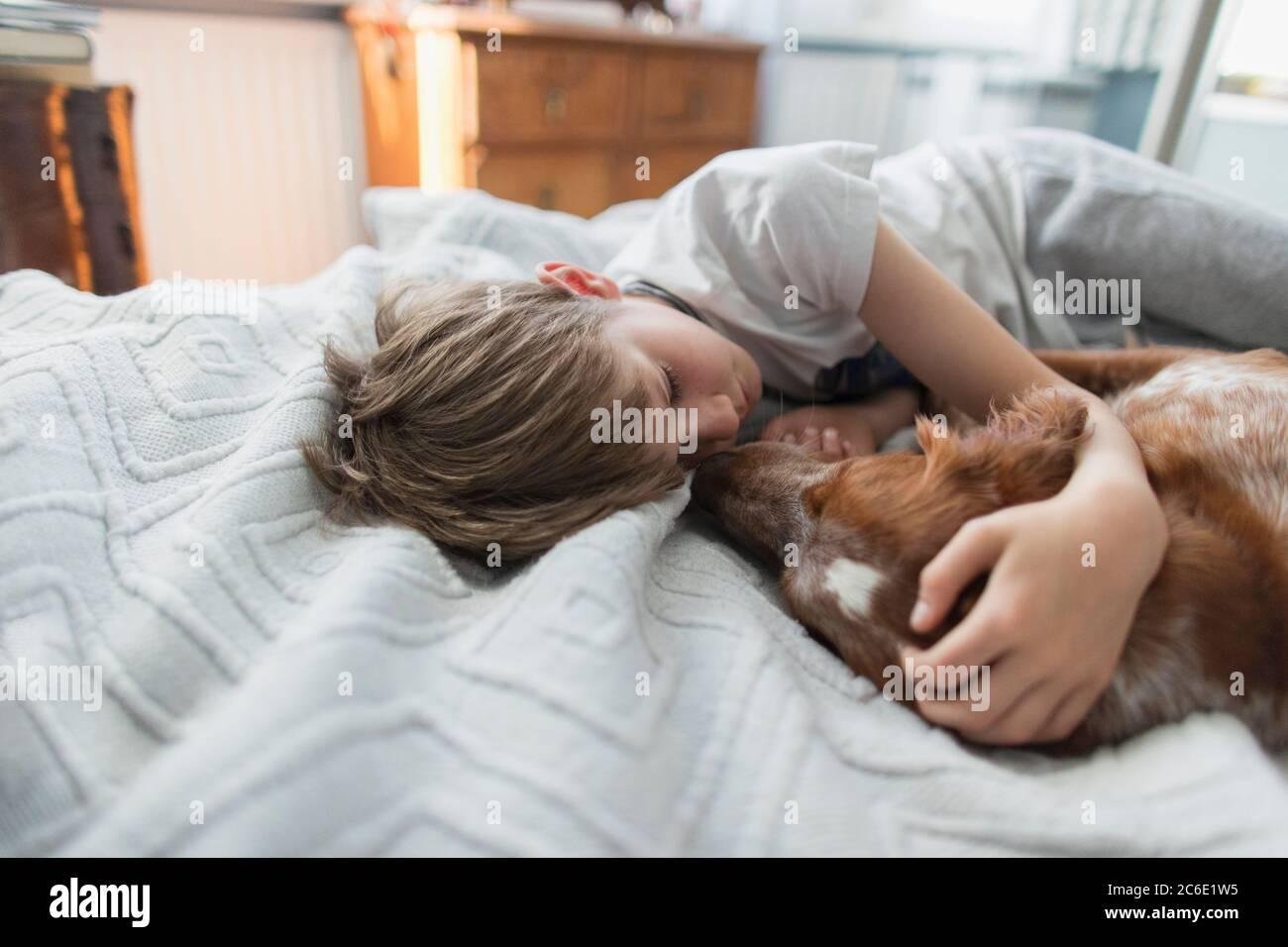 Cute boy cuddling dog on bed Stock Photo